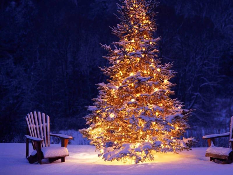Immagini Natale Montagna.Alu Le Nostre Migliori Offerte Per Le Tue Vacanze A Bormio
